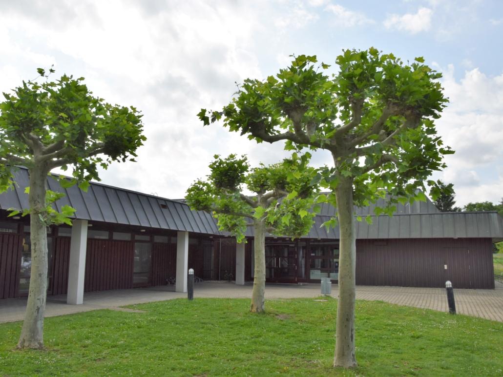Festhalle Sporthalle Frickenhausen